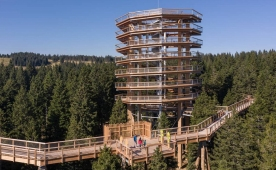 New attraction among the tree tops in Pohorje, Slovenia